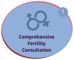 Comprehensive Fertility Consultation
